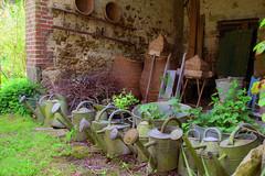 S.MasséMaisonduMajordome©TourismeHautLimousin-44 (tourisme_hautlimousin) Tags: jardin gîte vacances hautlimousin patrimoine location fleurs botanique tourolim