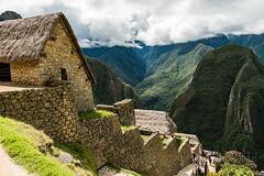 Machu Picchu -_DSC0513