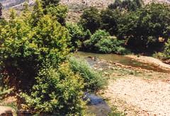 Hasbani river (Normann Photography) Tags: 1992 fntjeneste forsvaret hasbaniriver kontigent29 lebanon libanon peacecorps unservice unifil unitednations unitednationsinterimforceinlebanon bath coolingdown kids peacekeepers hasbaya nabatiyehgovernorate lb