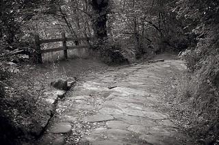l'antica via albana