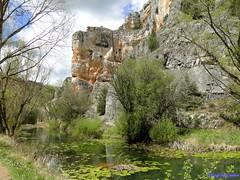 Cañón del Río Lobos (santiagolopezpastor) Tags: espagne españa spain castilla castillayleón soria provinciadesoria parquenatural naturaleza nature water agua river río