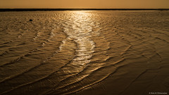 Wrinkles Of The Sea (Neha & Chittaranjan Desai) Tags: sea arabian india gujarat surat sunset shore waves wrinkles beach sundown landscaes nature travel