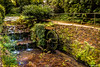 Jardin Botanico , Gijon (ton21lakers) Tags: jardin botanico gijon naturaleza asturias agua verde vegetacion canon tamron toño escandon