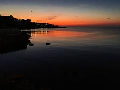 Sunset in Palermo (ilsiciliano_) Tags: sunset palermo sunsets italia ital nation colour red orange blu landscape water sea mare tramonto tramonti colori sicilia isola angry uccelli ombre luci contrasto