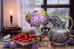 Midsummer's Day (memoryweaver) Tags: stilllife memoryweaver windowsill nature view windowview curtain window strawberries porcelain blueandwhite pitcher jug midsummersday midsummer