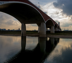 _DSC7679 (durr-architect) Tags: spiegelwaal ruimte room river waal nijmegen netherlands high water flood island bridge nevengeul