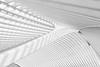 Enlightened Linestraction (frank_w_aus_l) Tags: lüttich liège abstract architecture bw sw monochrome blackandwhite lines nikon d7000 régionwallonne belgien be calatrava contrast highkey light guillemins innamoramento