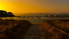 Sunrise in Portonovo (ЈΘŠΞПΔ72 ) Tags: fuji fujifilmx100f portonovo josema72 sunrise sanxenxo galicia españa summer greatphotographers