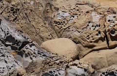 Salt Point State Park (elisecavicchi) Tags: tafoni gridwork loops sandstone holes salt point state park california ca jenner coast shore beach geology mesh lattice delicate
