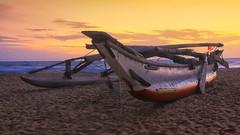 Negombo sunset, Sri Lanka (cattan2011) Tags: srilanka negombo sunset boat beaches waterscape seascape traveltuesday travelbloggers travelphotography travel naturelovers natureperfection naturephotography nature landscapeportrait landscapephotography landscape