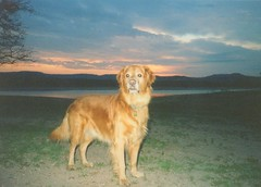Zack Lake Travis (fxb81) Tags: sunset lake travis zack