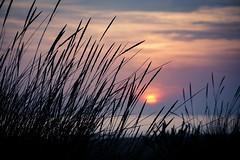 calm... (trellitaitaita) Tags: blue nikonworld nikond7200 nikonistas landscape luz love libertad cadiz countryside ocean shadows sunset sombras free wildlife