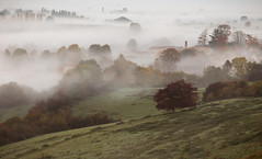 The Edge of Autumn (Sarah_Brooks) Tags: misty mist autumn trees chimney fall england fog inversion russet landscape somerset