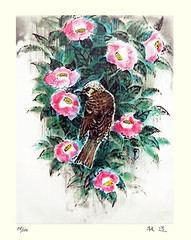 Camellia and brown-eared bulbul (Japanese Flower and Bird Art) Tags: flower camellia japonica theaceae bird browneared bulbul ixos amaurotis pycnonotidae yoshimichi fujimoto modern intaglio print japan japanese art readercollection