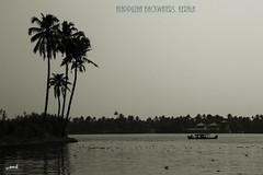 Alappuzha, Kerala, India (Yesmk Photography) Tags: alappuzha alleppe backwaters kerala godsowncountry india yesmk muthukumar monochrome bw outdoor waterscape canon 550d