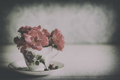20/52: A nice cup of rosy... [Explored] (judi may...mostly off for a while) Tags: project52 roses cup cupandsaucer teacup anicecupofrosylee vintage vignette table tabletopphotography stilllife pattern dof depthoffield bokeh