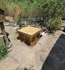 20170708_generator box location (JoelDeluxe) Tags: southvalley newmexico nm deluxevalleyorchards peaches flowers red orange yellow green joeldeluxe