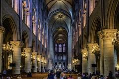 Notre Dame (gianmaria.colognese) Tags: parigi cattedrale gotico chiesa interno vetrate archi volte pilastri architettura