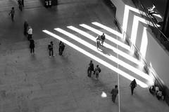 Lighten up (marktmcn) Tags: pattern london gallery art light diagonal stripes striped lines shadows turbine hall tate modern from above people walking through space dsc rx100 blackandwhite