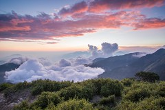 合歡山  Mountain Hehuan (Vincent_Ting) Tags: 合歡山 合歡主峰 夕照 sunset 雲海 雲 clouds 主峰登山口 sky 南投縣 仁愛鄉 台灣 taiwan formosa 高山 雲彩 夕彩 flare 日芒 星軌 星空 star startrails trails 車軌 night 霞光 crepuscularrays glow mountain moonlight 月光雲海 松雪樓 太魯閣國家公園 銀河 milkyway galaxy 日出 sunrise 武嶺 昆陽 hthehuan 玉山杜鵑 高山杜鵑 玉山箭竹 虎杖 vincentting mountainhehuan seaofclouds