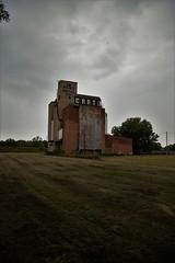 IMG_7369 (Chris Podosek) Tags: buffalomaltingcorp silo buffalo malting abandoned rehab restore wny wnyimages 716 industrial chrispodosek