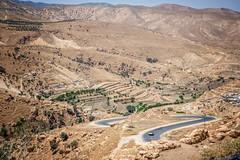 Dohuk and Sinjar Mountain  (90 of 267) (mharbour11) Tags: iraq erbil duhok hasansham babaga bahrka mcgowan harbour unhcr yazidi sinjar tigris mosul syria assyria nineveh debaga barzani dohuk mcgowen kurdistan idp