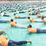 "International_Yoga_Day_2017 (121) <a style=""margin-left:10px; font-size:0.8em;"" href=""http://www.flickr.com/photos/127628806@N02/35104885613/"" target=""_blank"">@flickr</a>"