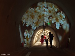 Floraart exhibition underground tunnel11