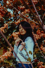 IMG_9490-6 (Niko Cezar) Tags: set sail supply co cai pacaon canon portrait university of the philippines up low light 24105 mm 5omm product shot flowers red warm nature hypebeast modern notoriety