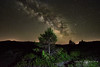 via lactea 4 (Javier Colmenero) Tags: estrellas stars víalactea longexposure largaexposición larioja sierradelademanda nikon nocturna fotografíanocturna nightphotography paisaje landscape landscapephotography árbol tree pinetree nikond7200 sigma1020 milkyway