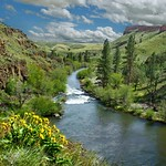 White River 519 D thumbnail