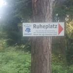2017-06-14: Ruheplatz im Wald