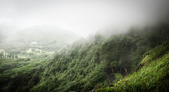 Piercing misty mountain (Rabican7) Tags: hawaii island oahu travelling mountain misty clouds green nature tunnels view overcast moody forest trees highway mysterious heights mistyandmysteriousheights