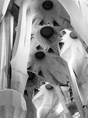 Sagrada Familia (Dell's Pics) Tags: sagrada familia barcelona temple catholic church basilica architecture stone angles olympus omd em5 sculpture monotone bw blackandwhite