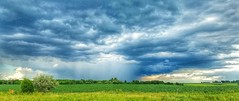 frontal assault... (BillsExplorations) Tags: stormfront thunderstorm rain lightning midwest stormscapes illinois clouds sky weather landscape field severeweather