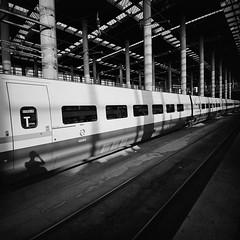 selfie (doistrakh) Tags: lomo lca120 mediumformat 120film 6x6 square film monochrome bw blackandwhite europe travel spain espana madrid madridpuertadeatocha train trainstation light shadow renfe