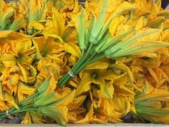Bouquet 5 fleurs de courgettes