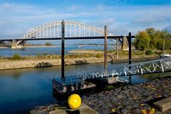 _DSC7630 (durr-architect) Tags: spiegelwaal ruimte room river waal nijmegen netherlands high water flood island bridge nevengeul