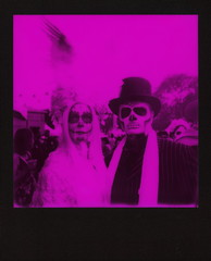 """Magenta Muertos Couple • <a style=""""font-size:0.8em;"""" href=""""http://www.flickr.com/photos/8426916@N04/35446257566/"""" target=""""_blank"""">View on Flickr</a>"""
