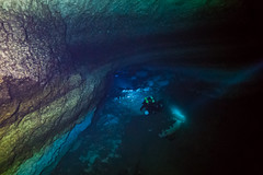 (Pablo A. Arias Cid - P. A. A. C.) Tags: scubadiving yucatán sacalum underwater underwaterphotography cenote cavediving cave megalodon ccr rebreather