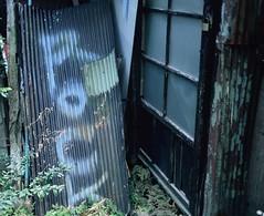 ROCK (YUKIHAL) Tags: pentax67 smc p67 90mm f28 rdpiii fujifilm film provia100f 120 mediumformat analog 67 6x7 pentax