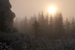 В тумане (Kirill & K) Tags: southernural kumardak ridge mashak mountain summer nature landscape южныйурал хребет кумардак машак горы лето природа пейзаж mist туман sun солнце fir tree ель деревья rock скала