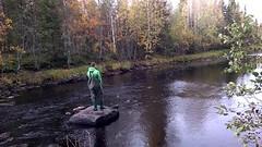 WP_20140921_13_48_26_Pro (RundgrenR) Tags: sanginjoki river oulu finland nature fishing autumn syksy kalastus suomi