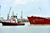 UNION 7 and SITEAM EXPLORER (dv-hans) Tags: bowfagus akerdijk eendracht texelbank union7 derdepetroleumhaven botlek nieuwewaterweg nieuwemaas siteamexplorer chemicaltanker
