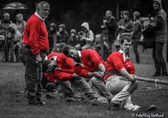 Tug O' War (FotoFling Scotland) Tags: highlandgames tug0war luss lusshighlandgames fotoflingscotland