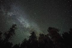The Milky Way (JeffAmantea) Tags: night astro astrophotography star stars tree trees dark kootenay kootenays bc british columbia canada lake outdoor outside sony a7ii sonyalpha alpha emount mirrorless nikon nikkor 24 28 landscape metabones milky way
