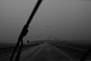 windshield wipers (audreytheshark) Tags: windshield whipers tulsa oklahoma rainstorm rain rainyday bnw bw blackandwhite bridge photography storming