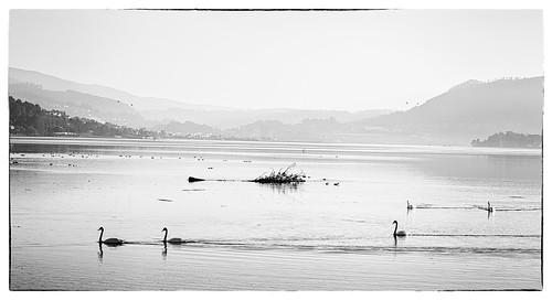 _IGP3530 Ulló-Enseada de San Simón, Ría de Vigo
