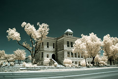 Ozona High School (Delfino Photography) Tags: texas ozona trees ir infrared infraredphoto infraredphotography
