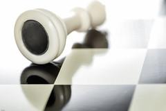 ... checkmate ... (wolli s) Tags: macromondays monday bottomup chess king macro bottomsup buttoms up mondays matt mate checkmate explore explored